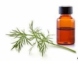 Anethum Graveolens Oil