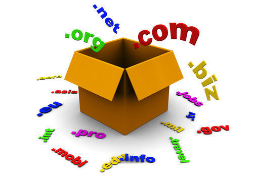 Domain Registration Facility