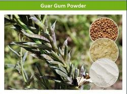 Effective Guar Gum Powder
