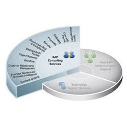 sap consulting services