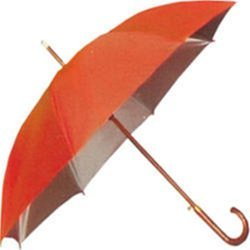 Silver Coating Umbrella