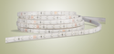 Waterproof LED Strip for Outdoor Application