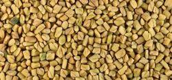Methi Seed/ Fenugreek Seed
