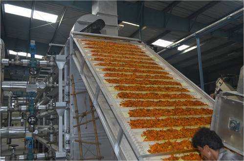 Onion Dehydration Plant Manufacturer From Vadodara