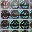 Stock Hologram Labels