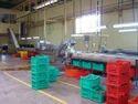 Gherkin Processing Equipment