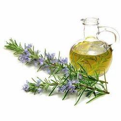 Apium Graveolens Oil