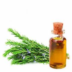 Rosemary Oil Soluble