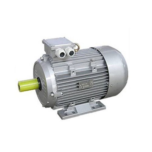 Induction Motors Electric Motor Wholesale Trader From Thane