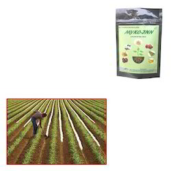 Mycorrhiza VAM for Commercial Farming