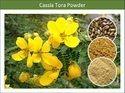 Excellent Grade Cassia Tora Powder