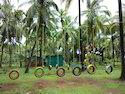 Tyre Activity