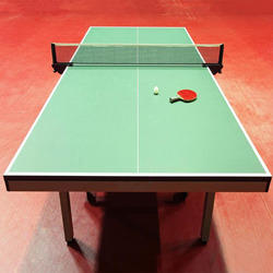 Table Tennis Court Parquet Flooring