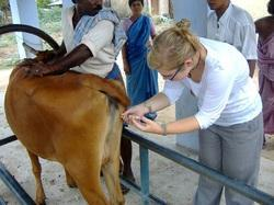 Veterinary Franchisee in Jharkhand