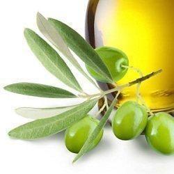 Olive Leaf Extarct