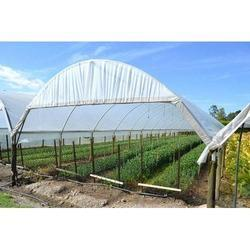 Greenhouse Covering Film