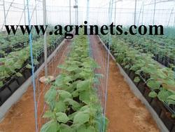 Plant Support Netting Mesh