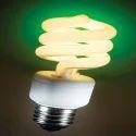 CFL Warm Light