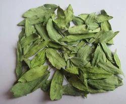 Herb Cassia Angustifolia