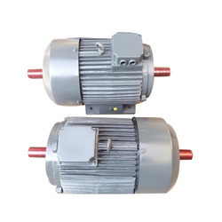 Double shaft motor in coimbatore double shaft electric for Double ended shaft electric motor