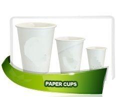 biodegradable paper