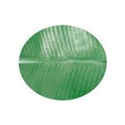 Round Shaped Paper Banana Leaf