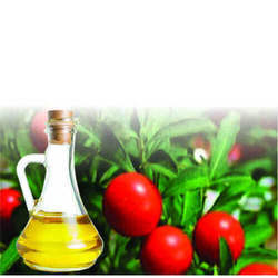 Ashwagandha Soluble Oil
