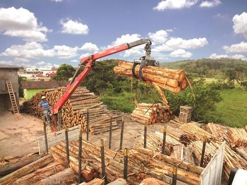 Timber and Recycling Cranes