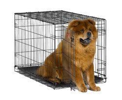 dog cat cages