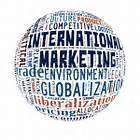 International Marketing Consultant