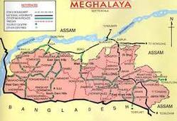 Medicines Marketing Services in Meghalaya