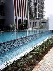 Swimming Pool Solutions Manufacturer From Pune