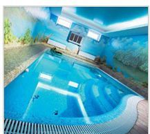 Swimming Pools Suppliers Manufacturers Dealers In Kochi Kerala
