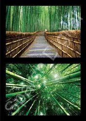 Natural Bamboos 3D Wallpaper