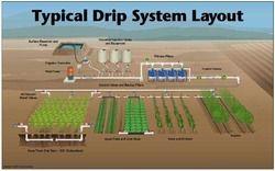 drip irrigation system layout