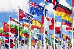 Multinational Logistics Express Services