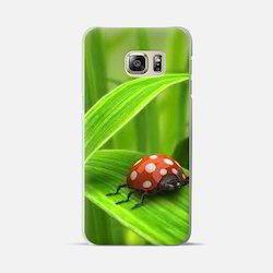 Customize Case - Bug