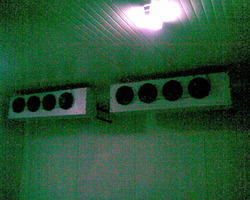 Refrigeration Room