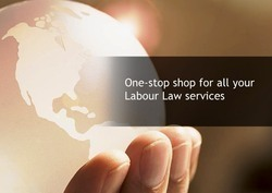 Labour Law Consulting Services