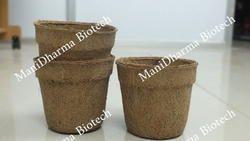 Coir Cups
