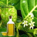 Morinda Oil Soluble