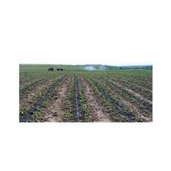 Drip Irrigation System and Equipments
