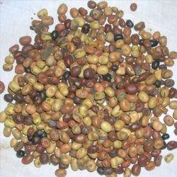 Dohichos Biflorus - Kulthi Extract