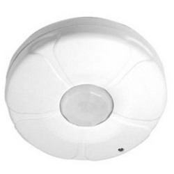 Ceiling mounted security light