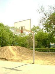 Basket Ball Poll