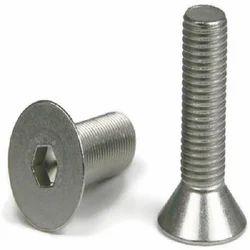 Stainless Steel Countersunk Head Screw
