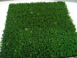 Artificial Cricket Turf Pitch Grass