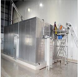 IQF Frozen Green Peas Processing Machinery