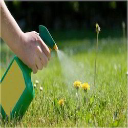 Fertilizers And Insecticides
