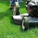 Grass Cutting Threads